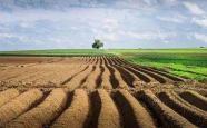 """农地改革政策加速制定""""三块地""""改革试点将收官"""
