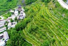 北京低收入村里藏着的嘉庆年间梯田