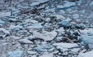 中国气象局:气候风险水平呈上升趋势
